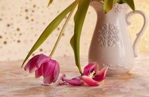 fleurs fanées mort décès